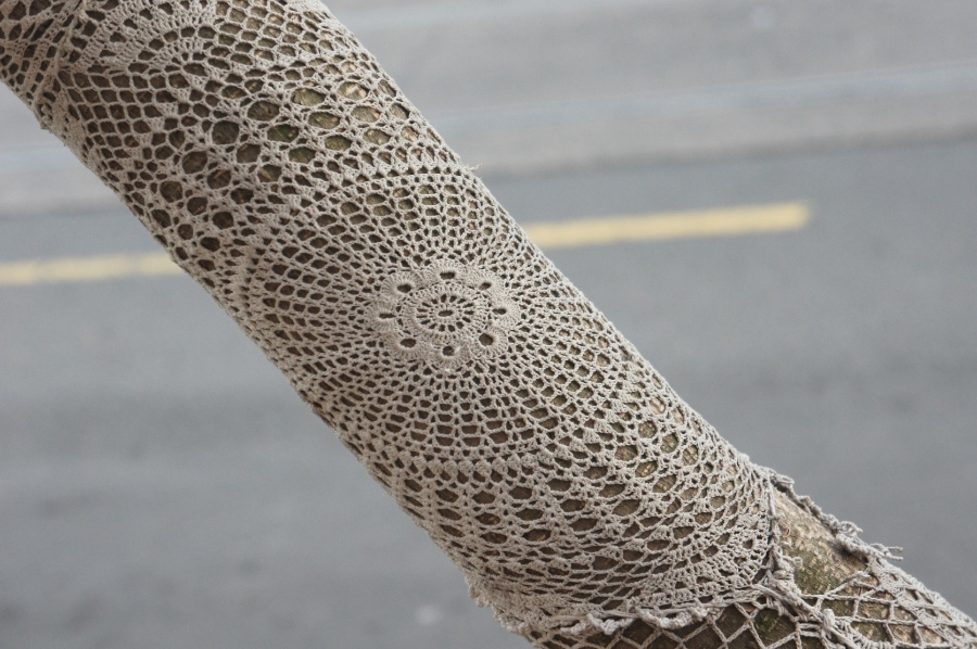 Lace crochet yarn bomb on a tree branch
